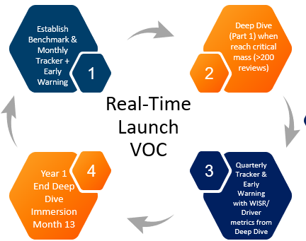 Introducing Real Time Launch VOC: : A Real-Time Solution for Brand Launches