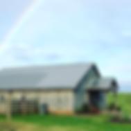 Bluewater Creek Farm