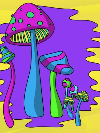 MAJESTIC MAGICAL MUSHROOMS