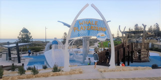 Whale Playground