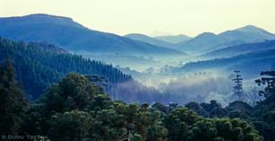 Monte Verde - MG - Br