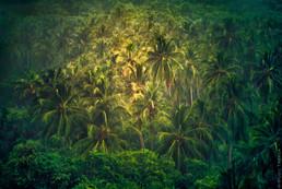 Tayrona National Park  - Venezuela