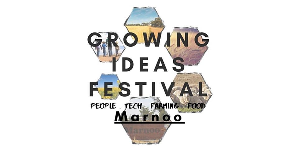 F2F Workshop @ Growing Ideas Festival