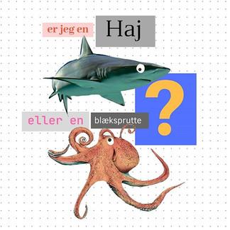 Er du en haj eller en blæksprutte?