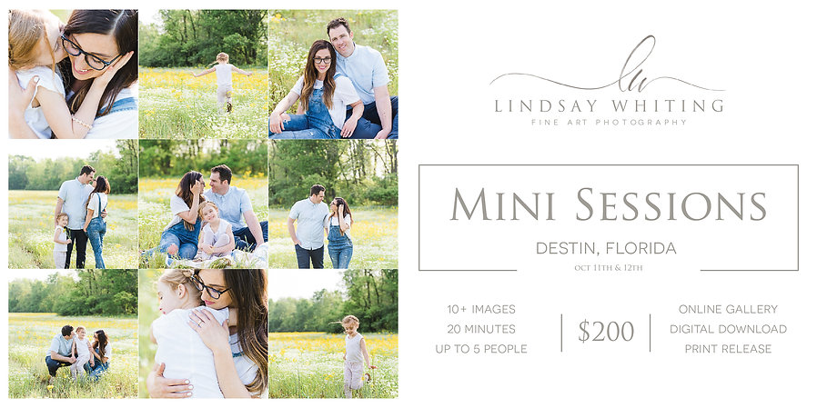 Lindsay Whiting Photography _ Florida Mi