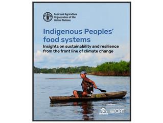 CHINAR Contribution to FAO Book