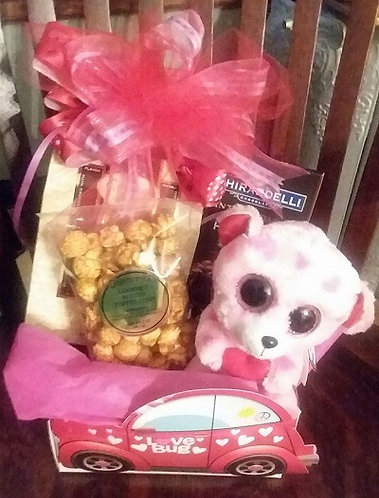 Valentine's Day Gift with Plush