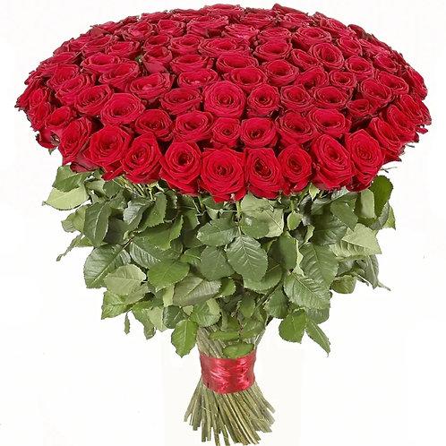 Роза - 101 шт. крас/бел/роз