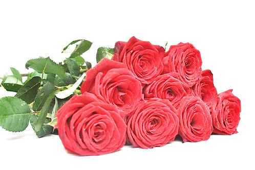 Роза - 9 шт. крас/бел/роз