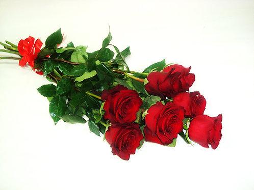 Роза - 7 шт.  крас/бел/роз