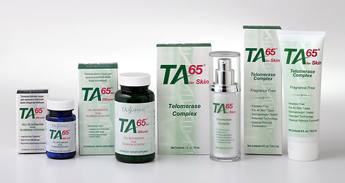 TA65MD商品フルライン画像