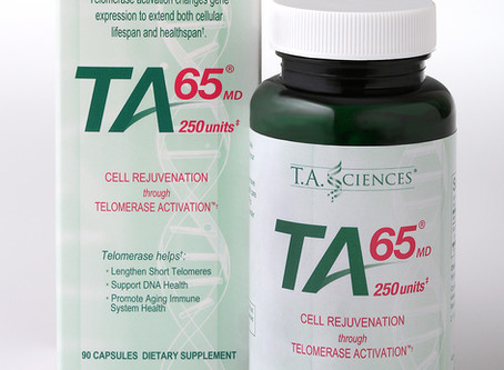 テロメアと免疫システムの関係