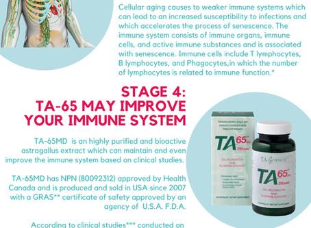 免疫強化:免疫の老化とテロメア
