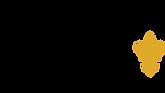 efex-appliques-03