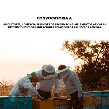 CONVOCATORIA SPOT.png