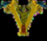 anmvea-logo.png
