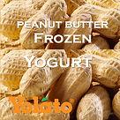 Madagascar Vanilla Frozen Yogurt