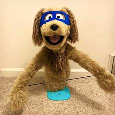 Fiber the Dog