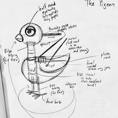 The Pigeon sketch