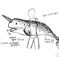 Narwhal sketch