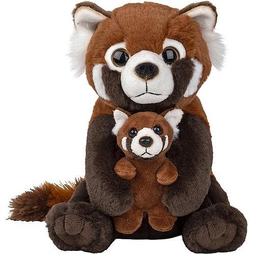 Famille panda roux