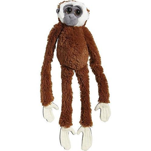 Gibbon à mains blanches 60 cm