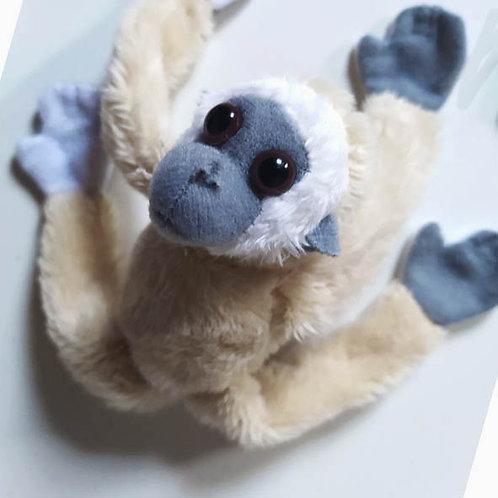 Magnet gibbon blanc