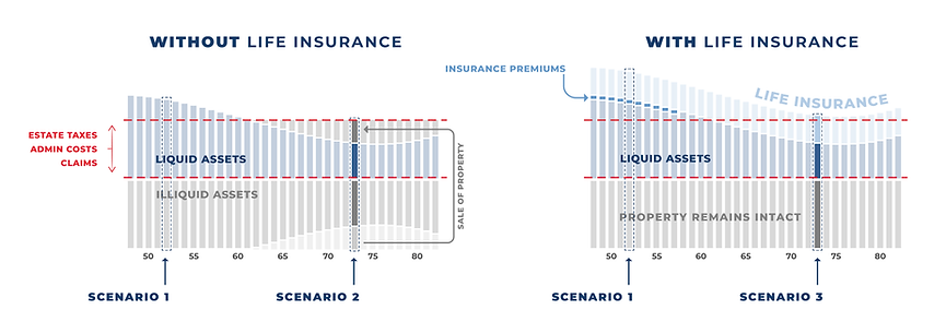 life insurance diagram v2-01.png