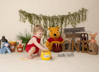 1 year cake smash Winnie the Pooh theme Suzette morin Photography