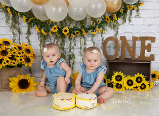 Cake smash 1 year old session suzette morin photography
