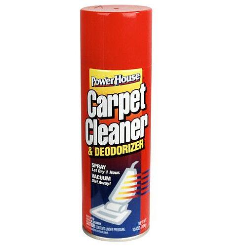 Carpet Cleaner Diversion Safe