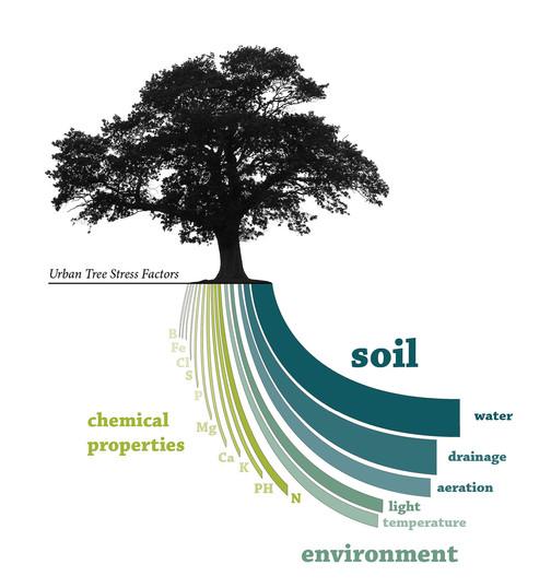 soil_infographic.jpg