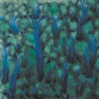 CG962 Blue Azure