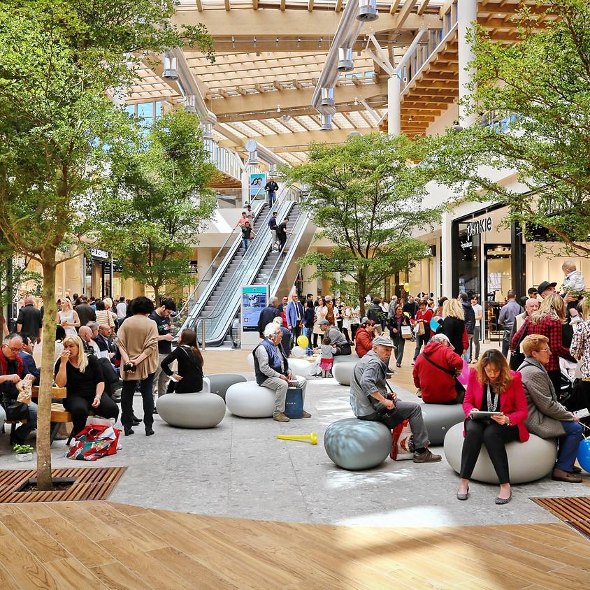 Swiss Council Shoppingcenter Insight