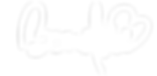 Bondsie_Logo_2016.png