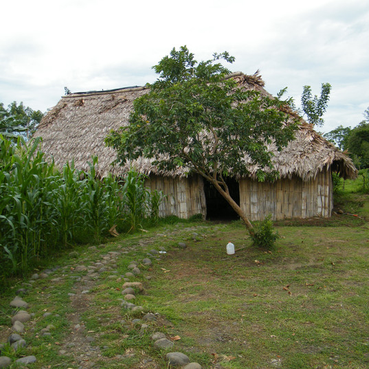 indigenous village hut.JPG