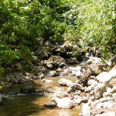 pocosol creek.JPG