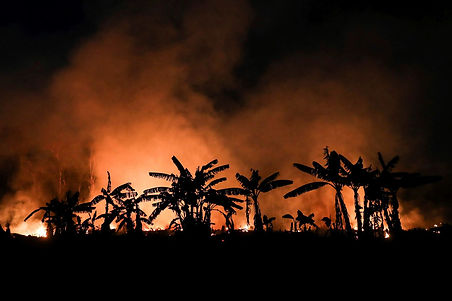 A forest fire rages in the town of Porto Velho, state of Rondonia, Amazonia, Brazil, on Sept. 9. (Fernando Bizerra/EPA-EFE/REX/Shutterstock)