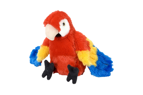 Marcela the Macaw