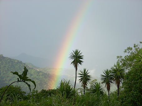 9 rainbow at San Gerardo field station.j