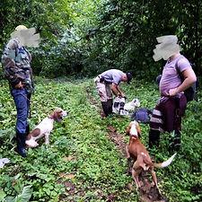 poachers.jpg