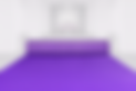 Indoor Carpet - Purple.png