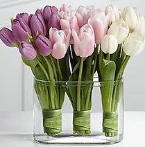 55 flowers.jpg