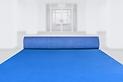 Indoor Carpet - Blue.png
