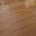 Hardwood Vinyl Plank Dance floor.png