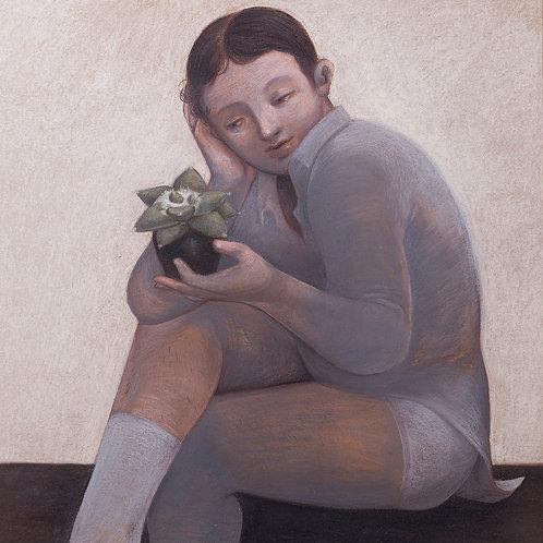 Slow Grower ~ Ariocarpus (2021)