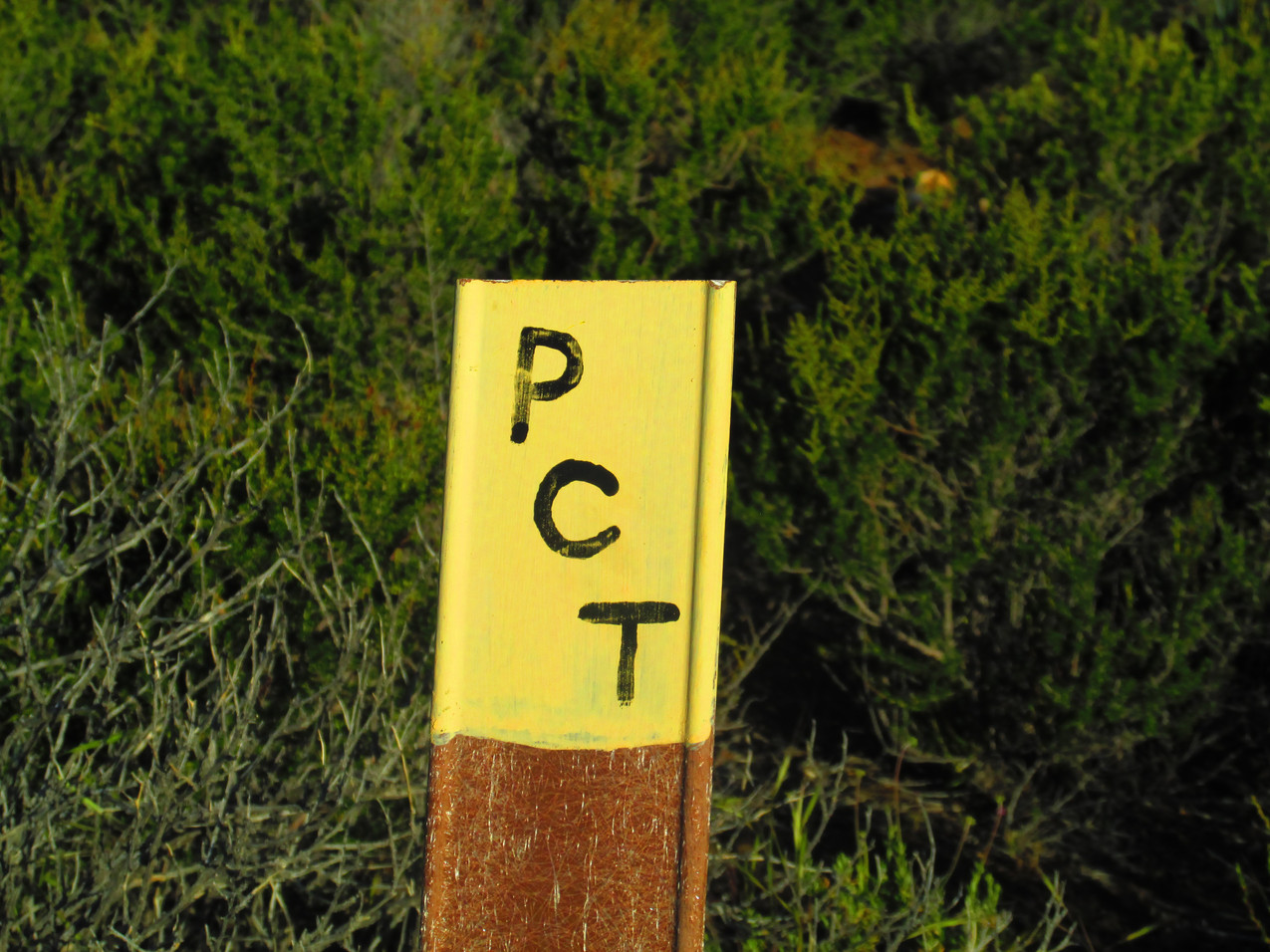 The PCT was marked in a lot of different ways.