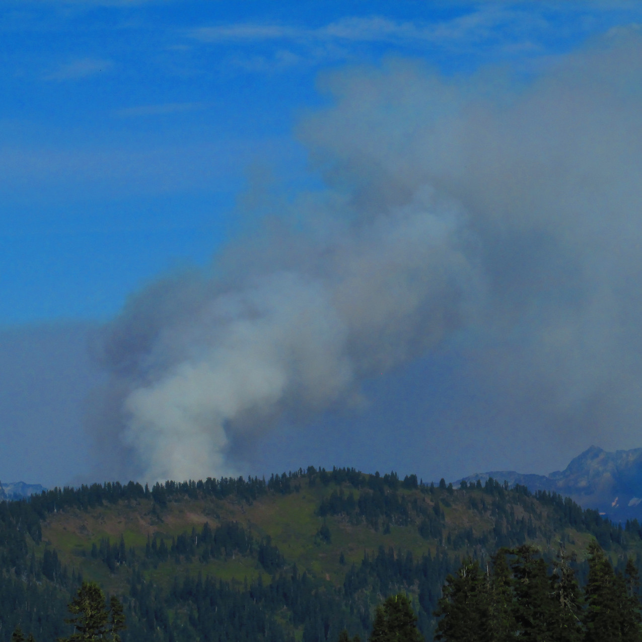 After a trail littered with fire closures, with a few from fires in 2016, seeing this smoke didn't exactly make me happy.