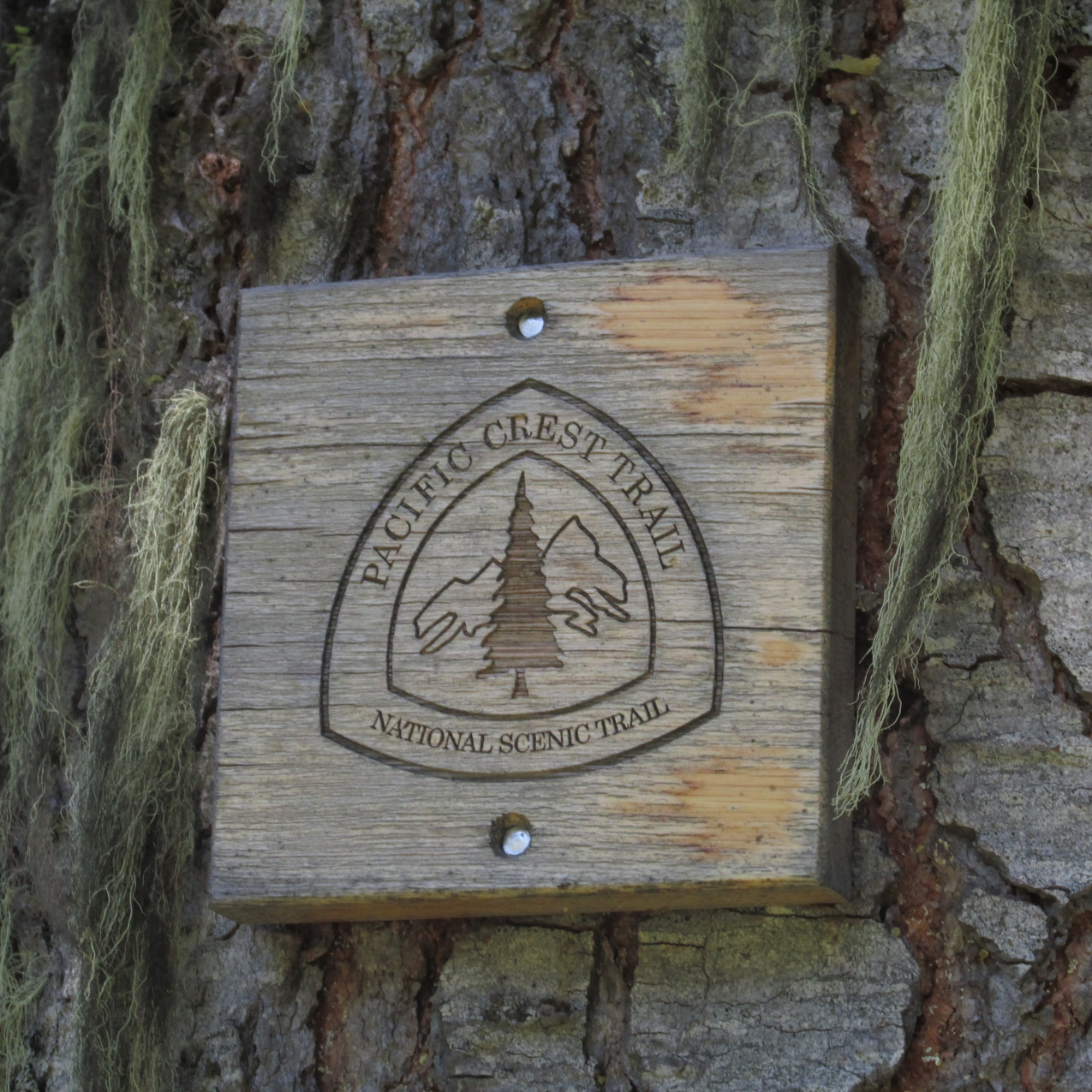 Another way the PCT was marked.