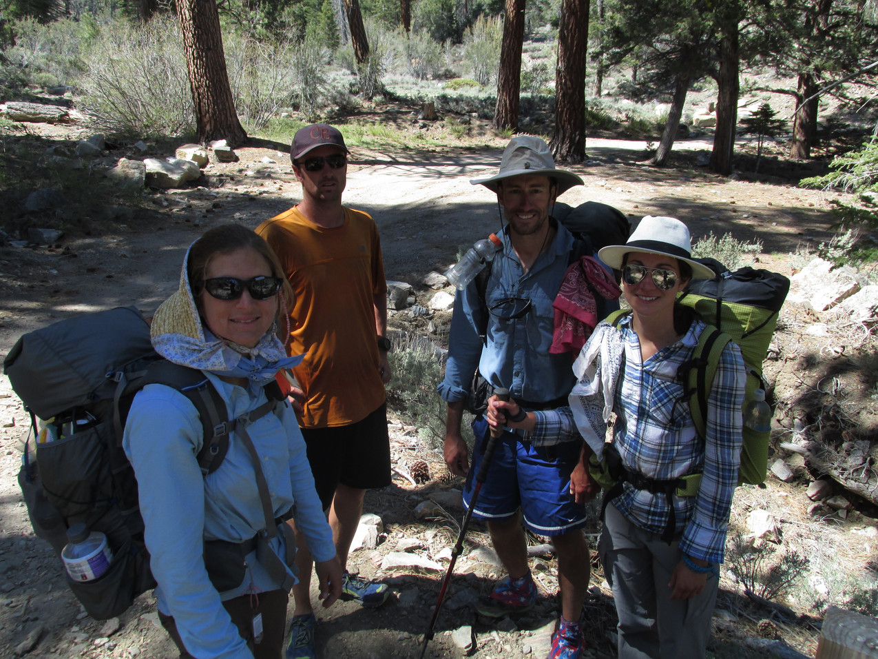Team Fire Closure without Town Food who took the picture.  From the left, Pitter Patter, Pathfinder, Bobber, and Wonky (later Sprinkler).  Now that we got back to the PCT, we disbanded and I took off solo.
